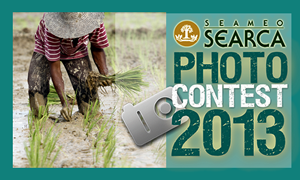 Photocontest-2013